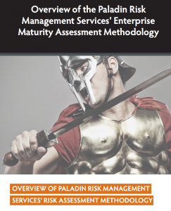 Risk management maturity assessment