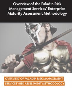 Risk management maturity assessment
